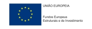 https://ec.europa.eu/info/funding-tenders-0/european-structural-and-investment-funds_pt